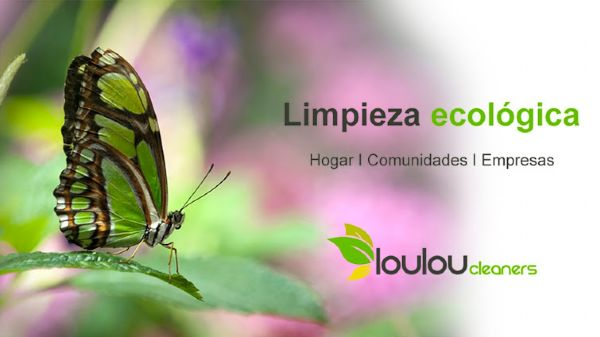 imagen web loulou cleaners